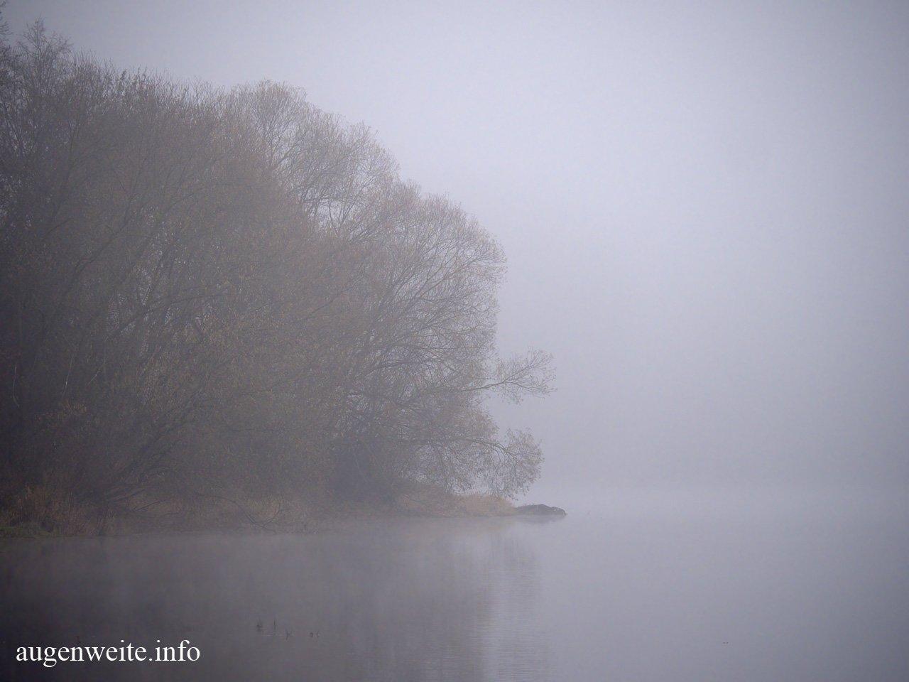 Nebellandschaft am Wasser